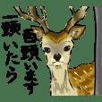 釧路スタンプ