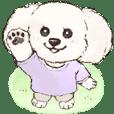 まるっこ犬 トイプードル(ホワイト)