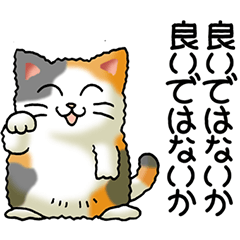I love cats! Part31