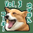 Yuzuoin corgi vol.3