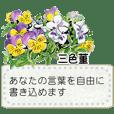 季節の花の一筆箋*メッセージスタンプ*