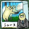 Mujiina NEWS(Japanese telop)