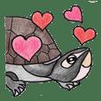 我最愛的小烏龜