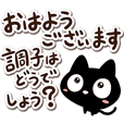 Very cute black cat. (Many letters)