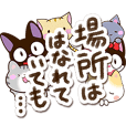 6 cute cats! (Poetry version)