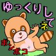 Bonboko Raccoon1