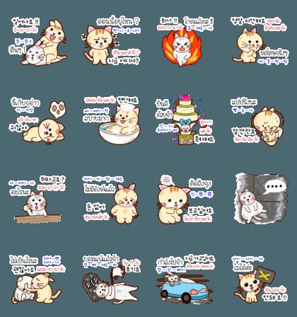 แมวน้อยสอนภาษาเกาหลี 2 TH-KR THAI-KOREA