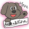 Cute and funy Toy Poodle charactor