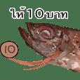 ปลาสีแดง