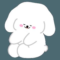 Gomi puppy