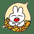Stomach heavy feeling rabbit