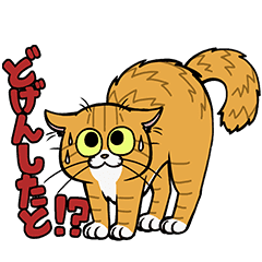 鹿児島 弁 を しゃべる 猫