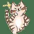 シマシマもくじ猫