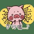 Cat ear pig