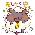 The Sheep Born in Hokkaido!