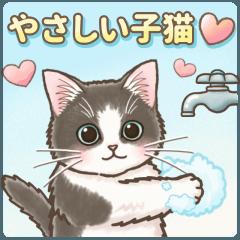 やさしいい子猫の動くスタンプ
