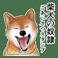 Japanese Shiba inu stickers!2
