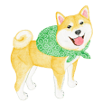 Shiba Sticker (English)
