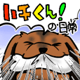 Daily Hachi-kun