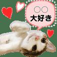ねこのみやび(ハートいっぱいver.)