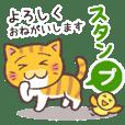 困り顔の茶トラ猫