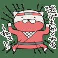 Cat Shinobu