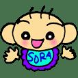 Sora's chat