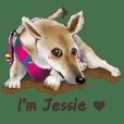 わんわんジェシー