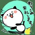 Kitty Panda2