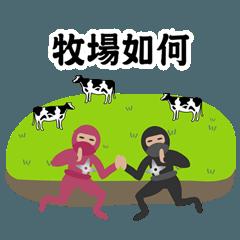 陽気な忍者カップル(旅行)