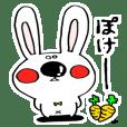 Hiroto of rabbit2