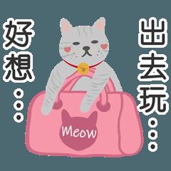 猫と猫-マスタートラベル