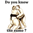 SUMO wrestle STICKER