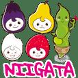 NIIGATA-BEN de GO! Vol.3