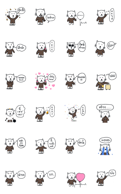 Tama : The bear cat