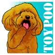 TOYPOODLE MOCA's Sticker