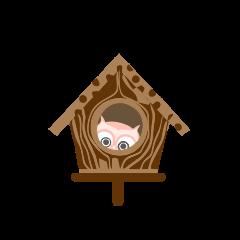 Plump Owl Cutie