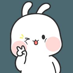 Nuomi Rabbit 5