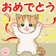 Orange tabby and white kitten 7