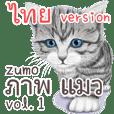 zumo ภาพ แมว vol.1 ไทย