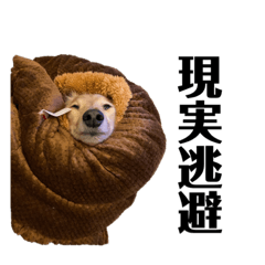 yumi_20200513155948