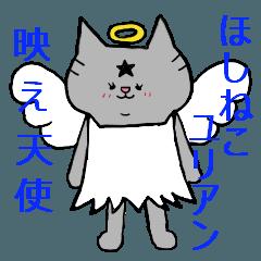 Star Cat Julian, a shining angel