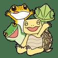 乌龟和青蛙,蜥蜴和蛇