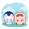 Peki & Pocco: Penguin and Raccoon