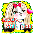 Friend of Shih Tzu 2