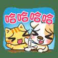 cute dog&cat