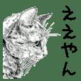 vol.03 Cats & Dogs 3 - Takahiro Yamada