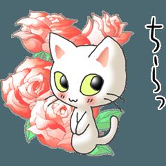 I love cats! Part34