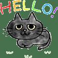 Black Cat CANNA