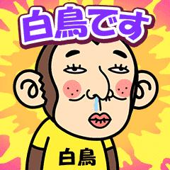 お猿の『白鳥』2お猿の『白鳥』2